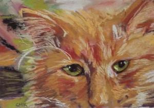 Jack the Cat, 5X8.5, pastel,
