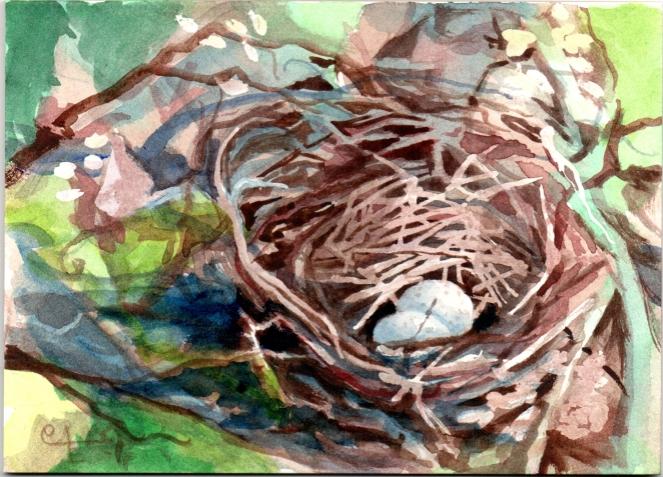 Nest120190530
